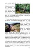 hamaika bide san ferminetara - Page 7