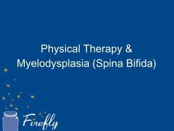 Physical Therapy & Myelodysplasia (Spina Bifida) - Firefly