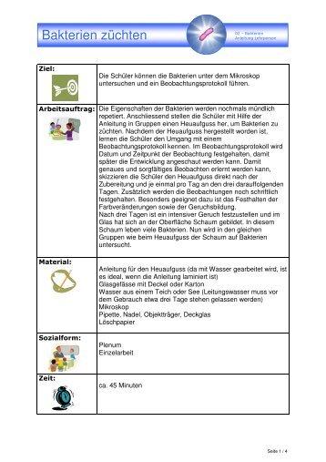 Dorable Zellen Am Leben Bakterienzelle Arbeitsblatt Image ...
