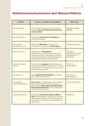 Unterrichtsverlauf BIOMAX 11 - Max Wissen