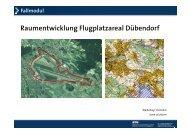 Testplanung Flugplatzareal Dübendorf - Institut für Raum - ETH Zürich