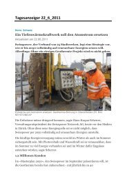 Tagesanzeiger 22_6_2011 - DTE Engineering AG