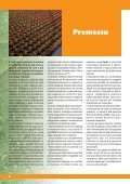 3 - Fertil - Page 4