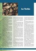3 - Fertil - Page 6