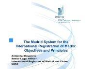 International Registration of Marks: Objectives and Principles