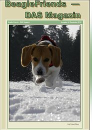 Ausgabe 6 / Dezember 2010 BeagleFriends - DAS Magazin