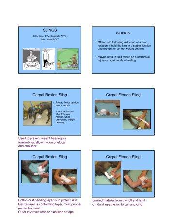 SLINGS SLINGS Carpal Flexion Sling Carpal ... - CSU PVM 2014