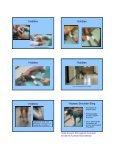 SLINGS SLINGS Carpal Flexion Sling Carpal ... - CSU PVM 2014 - Page 4