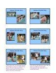SLINGS SLINGS Carpal Flexion Sling Carpal ... - CSU PVM 2014 - Page 5