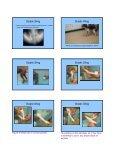 SLINGS SLINGS Carpal Flexion Sling Carpal ... - CSU PVM 2014 - Page 7