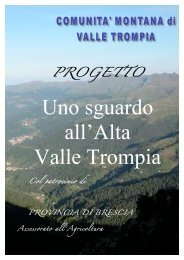Download file - Mario Braga