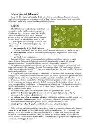 La vite, l'uva e il vino_seconda parte.pdf - Iissmussomeli.it
