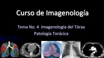 Curso de Radiología e Imagen, UANL