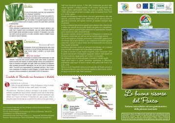 Scopri le piante e le sue ricette culinarie - Parco del Delta del Po