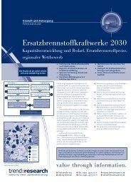 Ersatzbrennstoffkraftwerke 2030 - trend:research