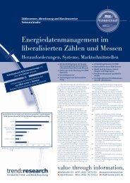 Energiedatenmanagement im liberalisierten Zählen ... - trend:research