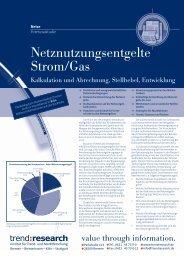 Netznutzungsentgelte Strom/Gas - trend:research
