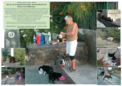 Tierschutz Auf Gran Canaria - Tierhilfe Süden eV