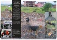 Lesen Sie den aktuellen Projektbericht (PDF, 1MB) - Tierhilfe Süden ...