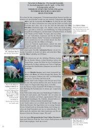 13. Kastrationsprojekt vom 30. April - 4. Mai 2012 - Tierhilfe Süden eV