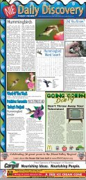Hummingbirds - Newspapers In Education - Sidney Daily News
