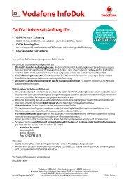 InfoDok 251: CallYa Universal-Auftrag