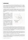 annexes - Amazona Guadeloupe - Page 7