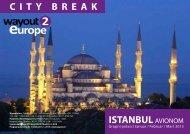 ISTANBUL AVIONOM CITY BREAK - Wayout