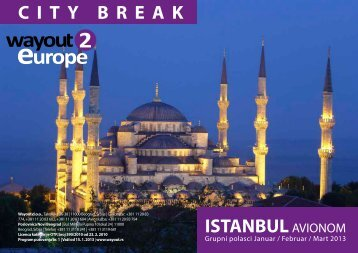 ISTANBUL AVIONOM CITY BREAK - Wayout
