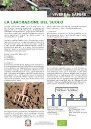 foglio informativo: lavorazione del suolo - Fachschule für Land- und ...