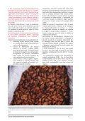 Cacao - Il Pubblico Tutore Dei Minori - Page 7