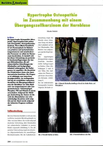 Hypertrophe Osteopathie - Tierzentrum Gelnhausen
