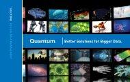 Better Solutions for Bigger Data. - Quantum