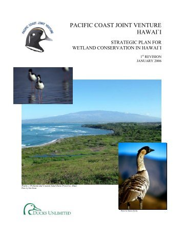 Hawaii - Pacific Coast Joint Venture