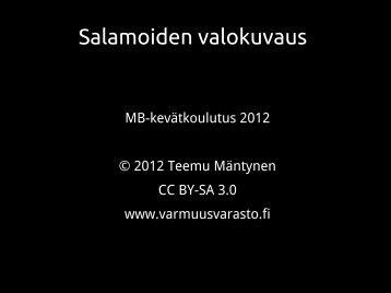 2 - Myrskyvaroitus.com
