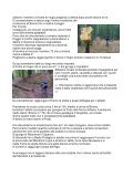 (Badia Prataglia) – Camaldoli - 4 gatti mtb cesenatico - Page 2