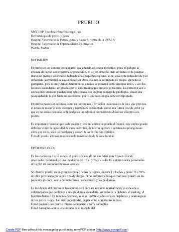PRURITO - Educa