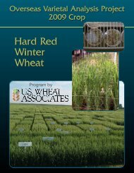 Hard Red Winter Wheat Hard Red Winter Wheat - Grain Science ...