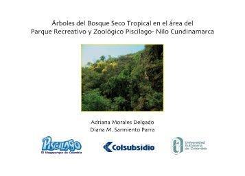 Árboles del Bosque Seco Tropical en el área - Fundación ...