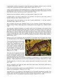 Le promesse di Dio per me - Risorse Avventiste - Page 6