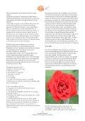 printversie - Zachariel - Page 4