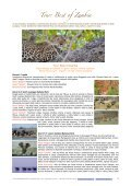 pacchetti ITA 2013 - African View Tours and Safaris - Page 3