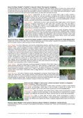 pacchetti ITA 2013 - African View Tours and Safaris - Page 7