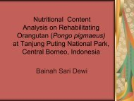 Nutritional Content Analysis on Rehabilitating Orangutan (Pongo ...