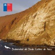 Biodiversidad del Borde Costero de Arica - Foto Naturaleza