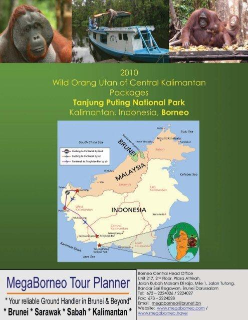 Tanjung Puting National Park Packages - Megaborneo Tour Planner