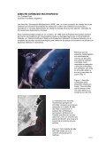 Arrecifes Sumergidos Multipropósito ASM - Surfrider Foundation ... - Page 5
