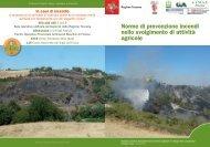 Attività agricole e prevenzione rischio incendi - Provincia di Pisa