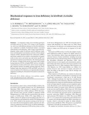 Actinidia deliciosa - Plant Stress Physiology