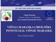 02 Višnja maraska i biološki potencijal višnje maraske - ipa-marasca